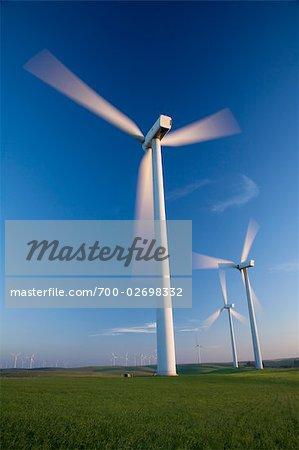 Wind Turbines, Bird's Landing, California, USA