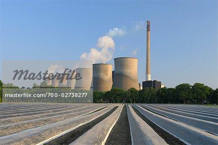 Scholven Power Station, Gelsenkirchen, North Rhine-Westphalia, Germany