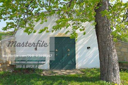 Wine cellar, Weiden am See, Neusiedl am See, Burgenland, Austria