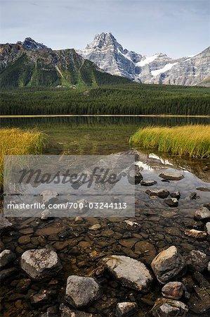 Waterfowl Lake and Mount Cephren, Banff National Park, Alberta, Canada