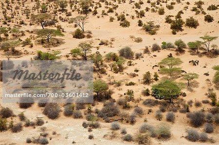 Aerial View, Lake Turkana, Kenya, Africa