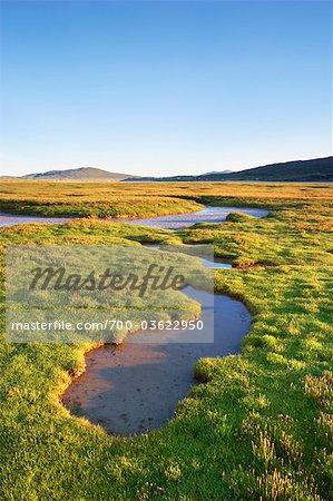 Tidal Pools, Isle of Harris, Outer Hebrides, Hebrides, Scotland