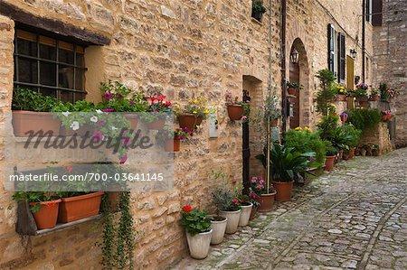 Street in Spello, Umbria, Italy