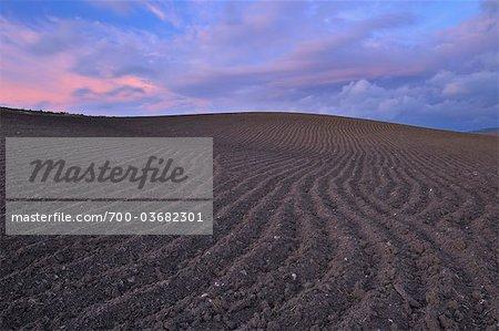 Plowed Field at Sunset, Near Ronda, Malaga Province, Andalucia, Spain