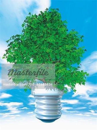 Tree in Lightbulb Base