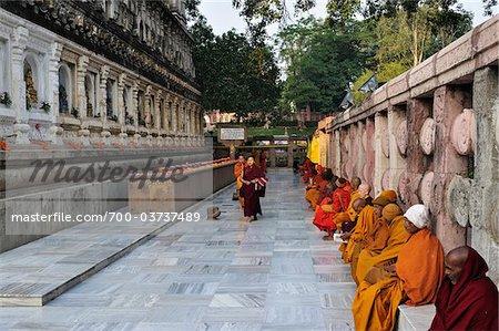 monks at mahabodhi temple bodh gaya gaya district bihar india