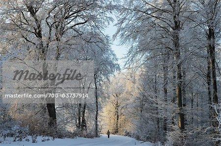 Person on Wintery Road, near Albstadt, Swabian Alb, Baden-Wurttemberg, Germany