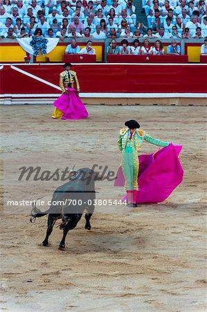 Matadors and Bull in Bullfighting Ring, Fiesta de San Fermin, Pamplona, Navarre, Spain