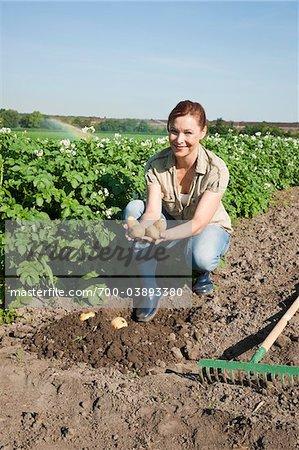 Woman in Potato Field, Mannheim, Baden-Wurttemberg, Germany
