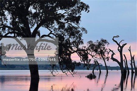 Lake Hume at Sunset, Victoria, Australia