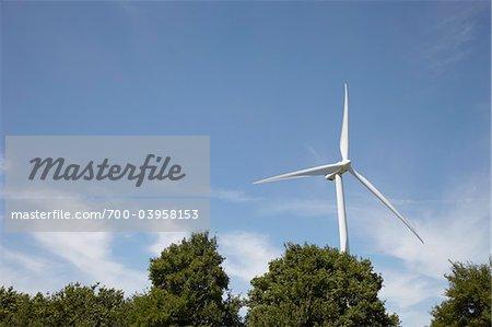 Wind Turbine and Tree Tops, Hamburg, Germany