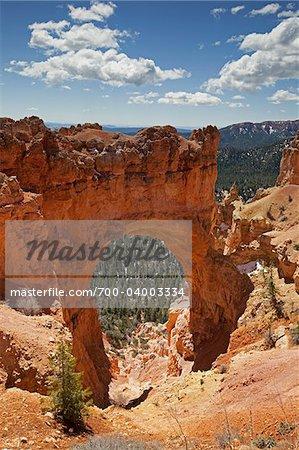 Natural Stone Arch, Bryce Canyon National Park, Utah, USA