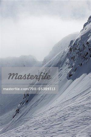 Ski Tracks, Whistler Mountain, Whistler, British Columbia, Canada