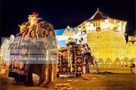 Elephants and Temple of the Tooth, Esala Perahera Festival, Kandy, Sri Lanka