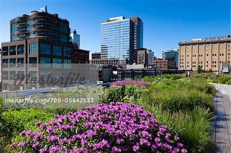 High Line Urban Park, New York City, New York, USA