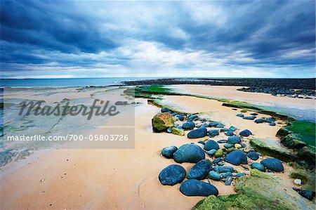 Beach at Embleton Bay, Northumberland, England