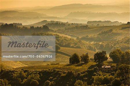 Farmland and Rolling Hills, San Gimignano, Siena Province, Tuscany, Italy