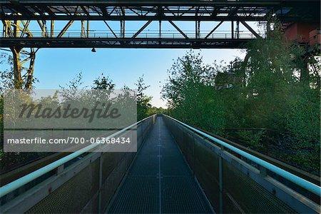 Aerial Walkway, Landschaftspark Duisburg-Nord, Meiderich Huette, Duisburg, Ruhr Basin, North Rhine-Westphalia, Germany