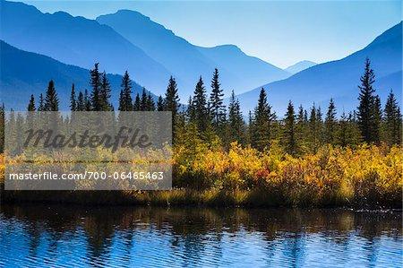 Autumn Vegetation and Mountain Range at Vermilion Lakes, near Banff, Banff National Park, Alberta, Canada