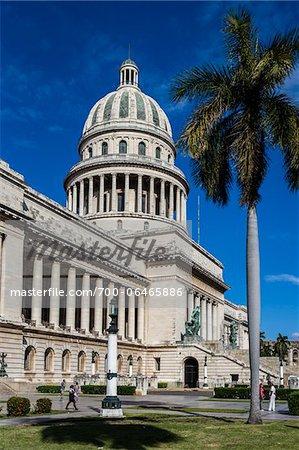 El Capitolio with Palm Tree, Old Havana, Havana, Cuba