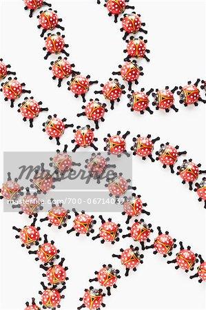 still life of ladybugs chocolate on white background
