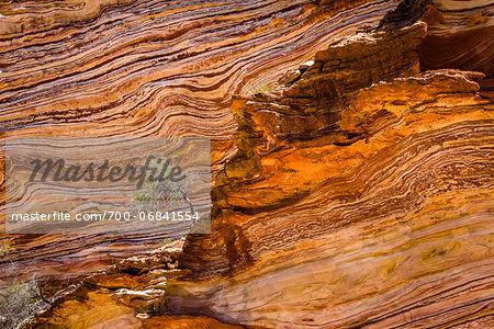 Lone Tree and Striped Rock Patterns, The Loop, Kalbarri National Park, Western Australia, Australia