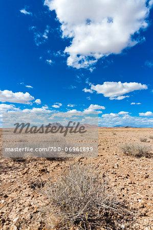 Scenic view of the Namib desert, Namibia, Africa