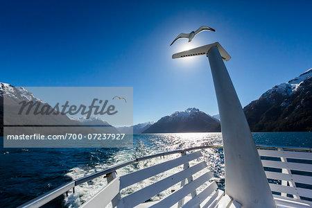 Close-up of tour boat with seagull on lake, Cruce Andino, Nahuel Huapi National Park (Parque Nacional Nahuel Huapi), Argentina