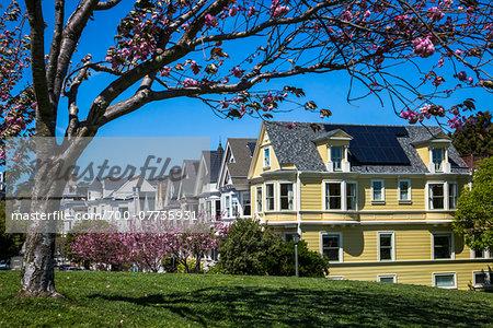 Houses by Duboce Park, San Francisco, California, USA