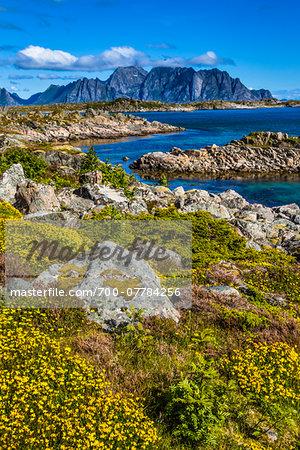 Rolvsfjord, Vestvagoy, Lofoten Archipelago, Norway