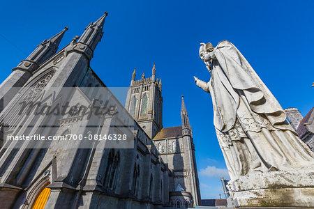 Statue of St Patrick and St Mary's Cathedral, Kilkenny, County Kilkenny, Ireland