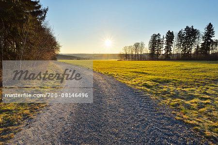 Gravel Path at Sunrise in Spring, Gottersdorf, Neckar-Odenwald-District, Odenwald, Baden Wurttemberg, Germany