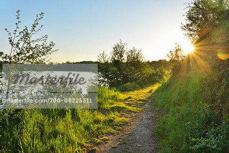 Pathway along shoreline at Sunrise in Spring, Niedernberg, Miltenberg-District, Churfranken, Franconia, Bavaria, Germany