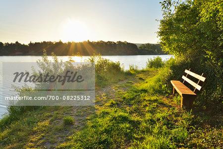 Pathway along Shoreline at Sunrise with Bench, Niedernberg, Miltenberg-District, Churfranken, Franconia, Bavaria, Germany
