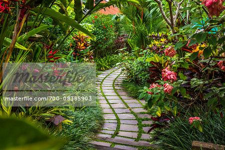 Pathway through gardens in Petulu, near Ubud, Bali, Indonesia