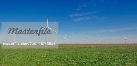 Wind turbines on green field against blue sky in Burlington Colorado, USA