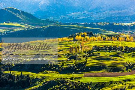 Farmland with sunlit fields in the Wakatipu Basin near Queenstown in the Otago Region of New Zealand
