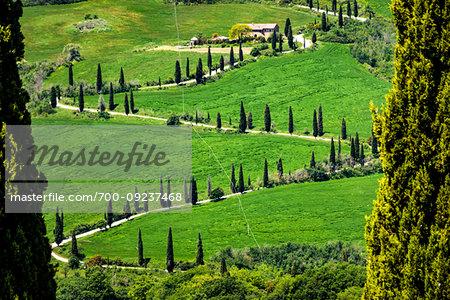 Windy road near Villa La Foce, Tuscany, Italy.
