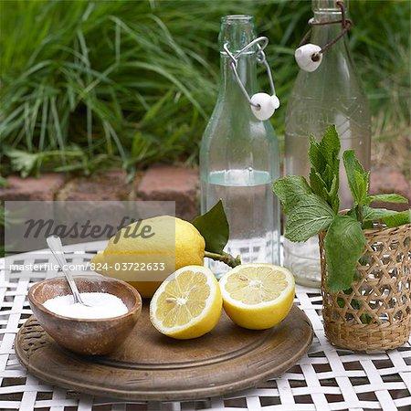Ingredients for Lemonade