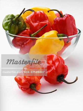 Scotch bonnet chilli peppers