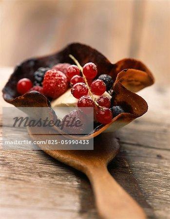 chocolate tulip with vanilla ice cream and summer fruit