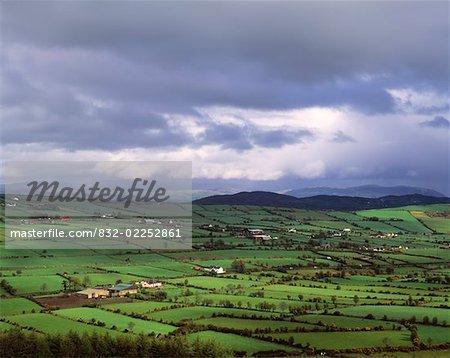 Pastoral Scene, Near Whitecross, County Armagh, Ireland