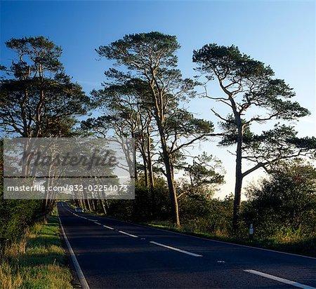 Rural Roads, A 26 Coleraine, Co Antrim