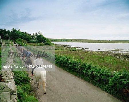 Pony Trekking, Connemara, Ireland
