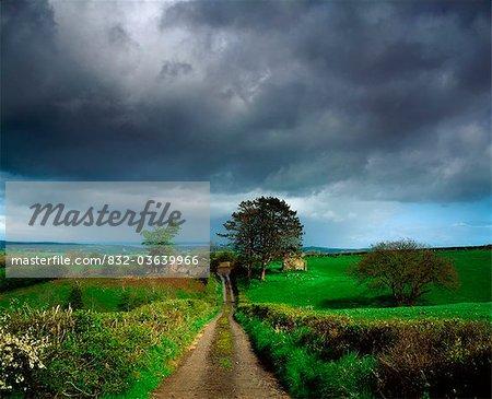 Co Armagh, Northern Ireland, Small Farm Near Whitecross