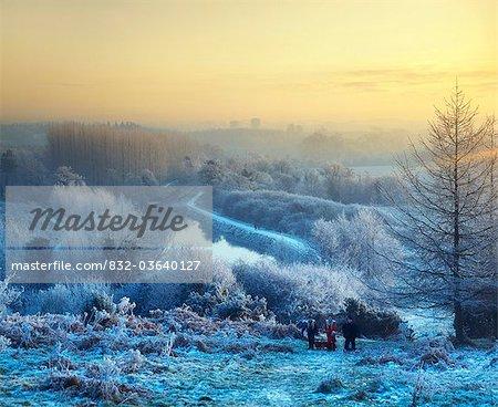 Belfast, Co Antrim, Northern Ireland, Lagan Meadows