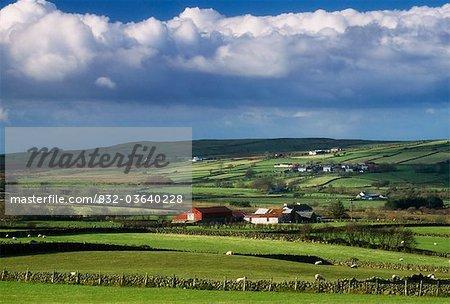 Glens Of Antrim, Co Antrim, Ireland; Farmland