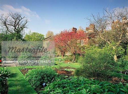 Chelsea Physic Garden, London, England, United Kingdom, Europe