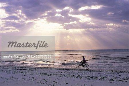 Fisherman cycling along the beach near Bweju against dramatic sky, island of Zanzibar, Tanzania, East Africa, Africa