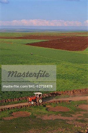 Tractor and fields near Diyarbakir in Kurdistan, Anatolia, Turkey, Asia Minor, Eurasia